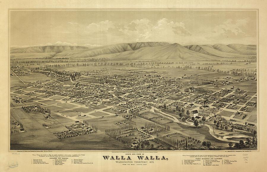 Vintage Pictorial Map Of Walla Walla Wa - 1876 Drawing