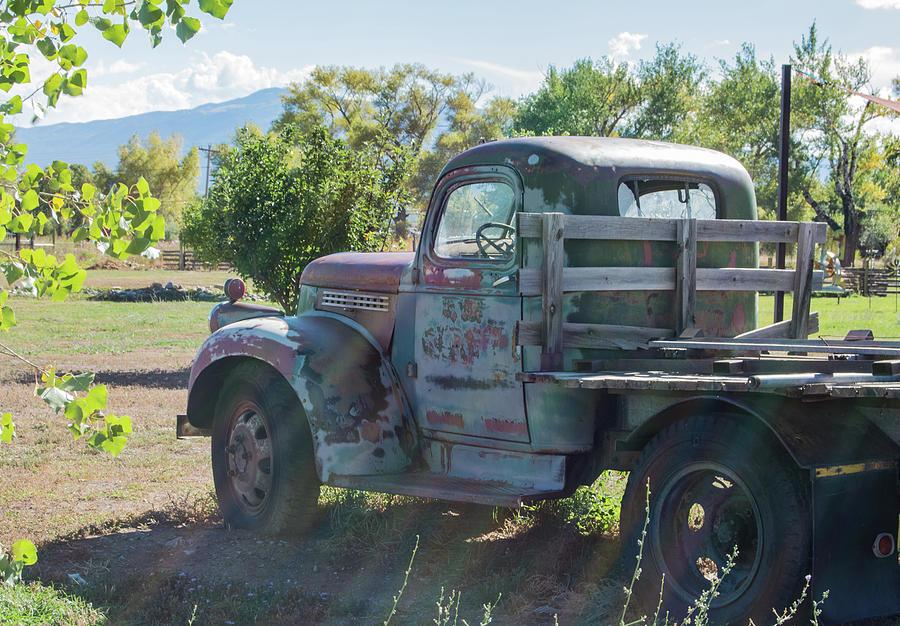Gmc Photograph - Vintage Truck 7 by Lea Rhea Photography