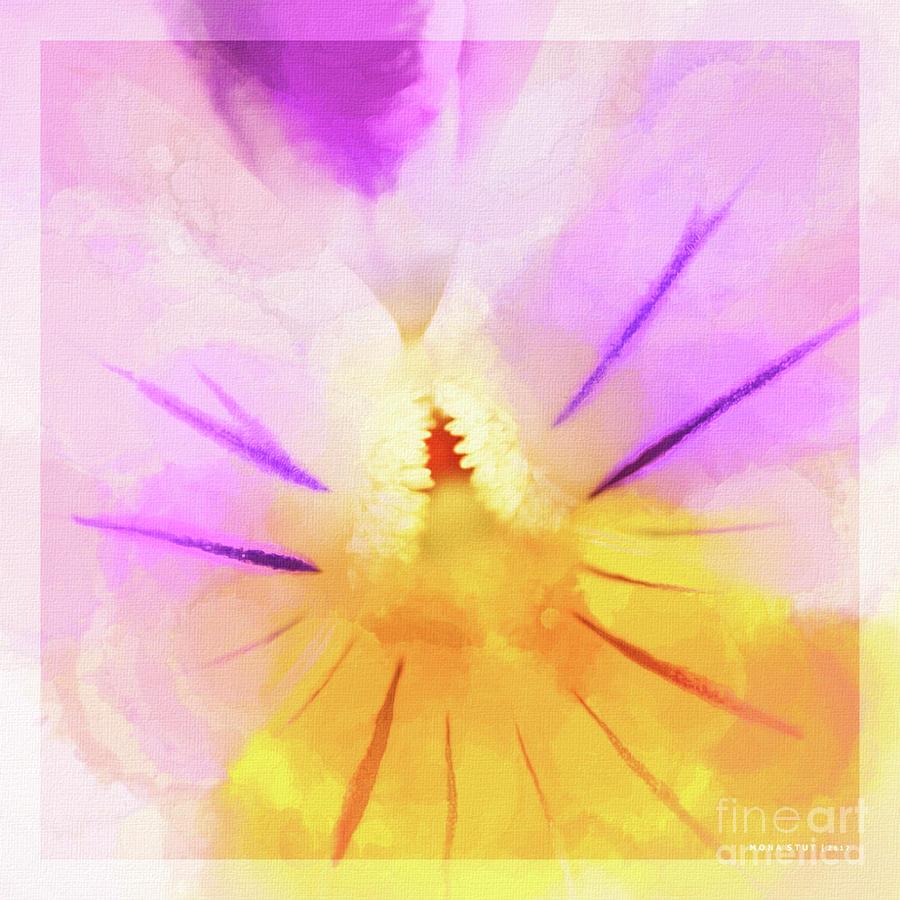 Viola Cornuta Horned Pansy Macro Digital Art