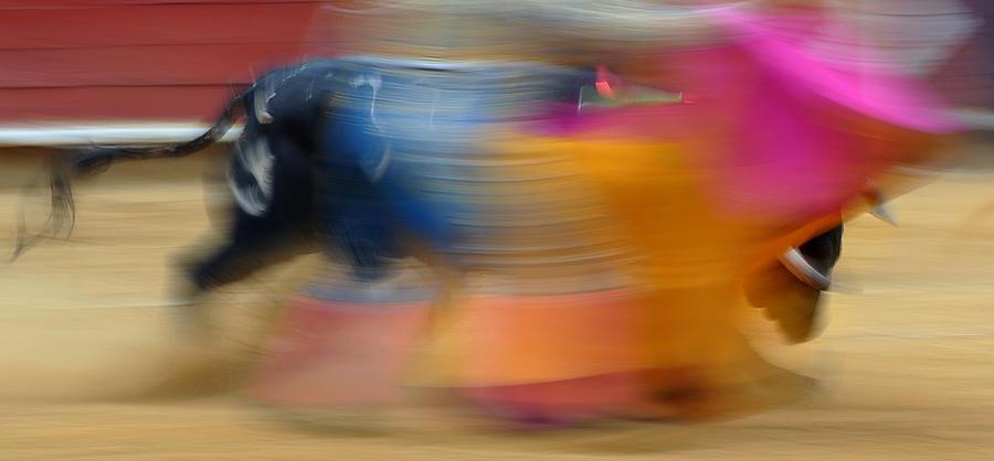Spain Photograph - Violent Colours by Rafa Rivas
