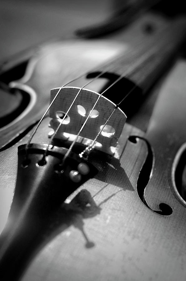 Vertical Photograph - Violin by Danielle Donders - Mothership Photography