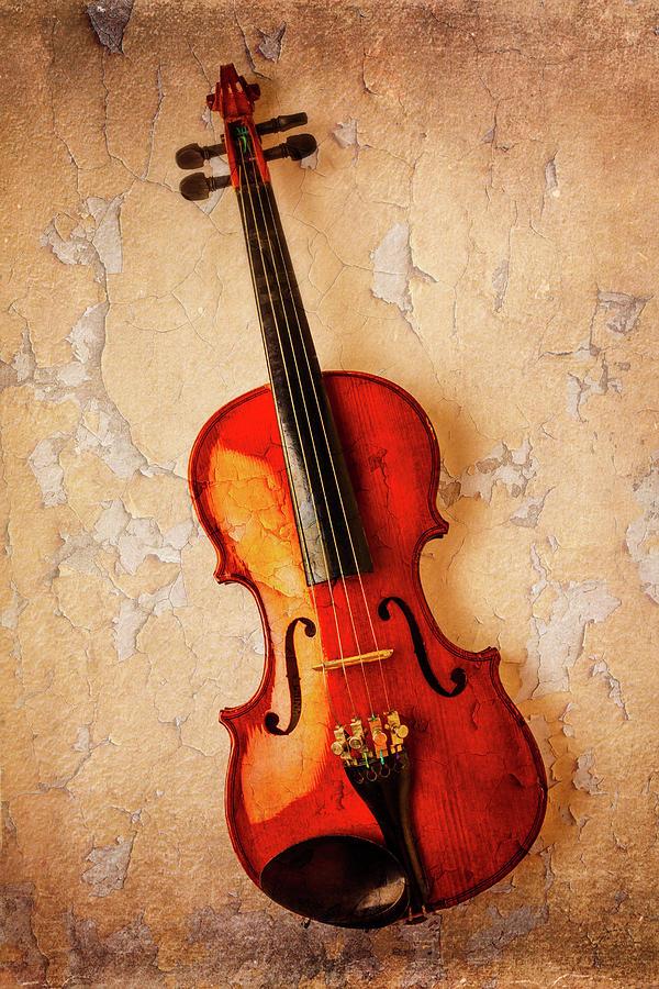Instrument Photograph - Violin Dreams by Garry Gay
