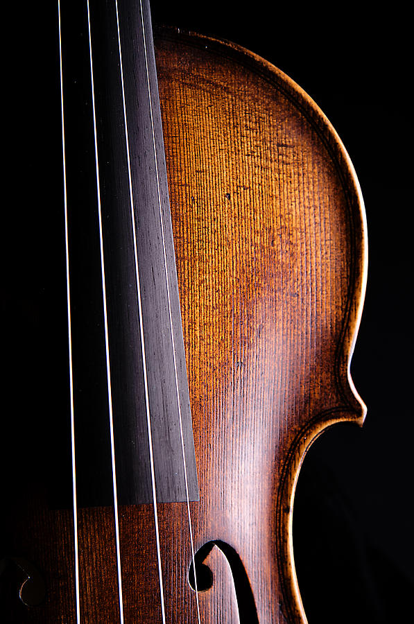 Violin Photograph - Violin Isolated on Black by M K Miller