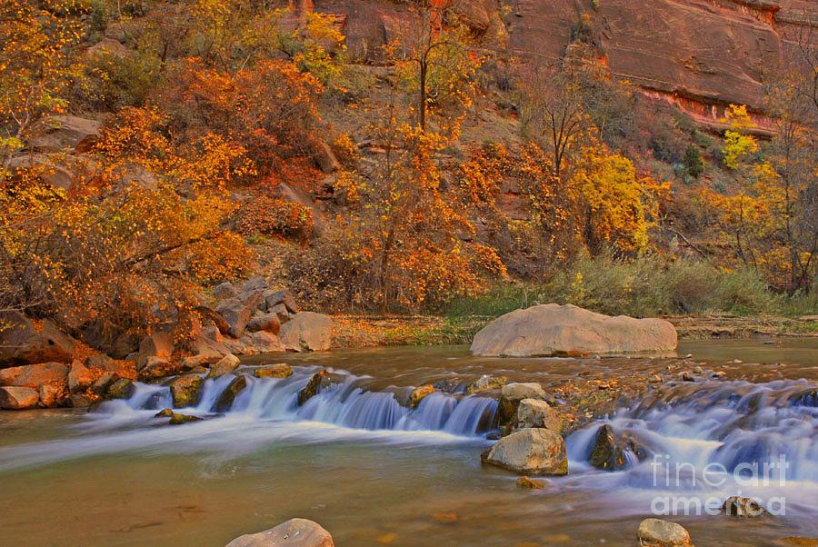 Utah Photograph - Virgin River In Autumn by Dennis Hammer