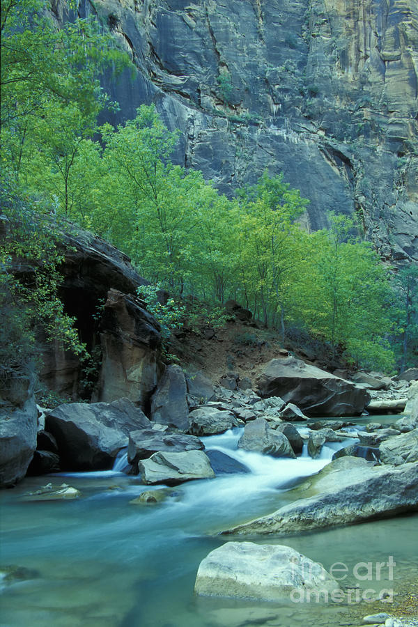 Utah Photograph - Virgin River In Zion 2 by Stan and Anne Foster