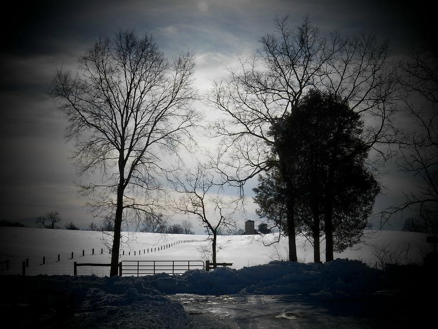Virginia Photograph - Virginia Snow by Joyce Kimble Smith