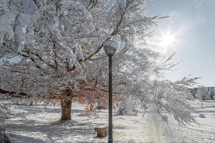 Virginia Photograph - Virginia Tech Campus Snowy Brilliance by Betsy Knapp