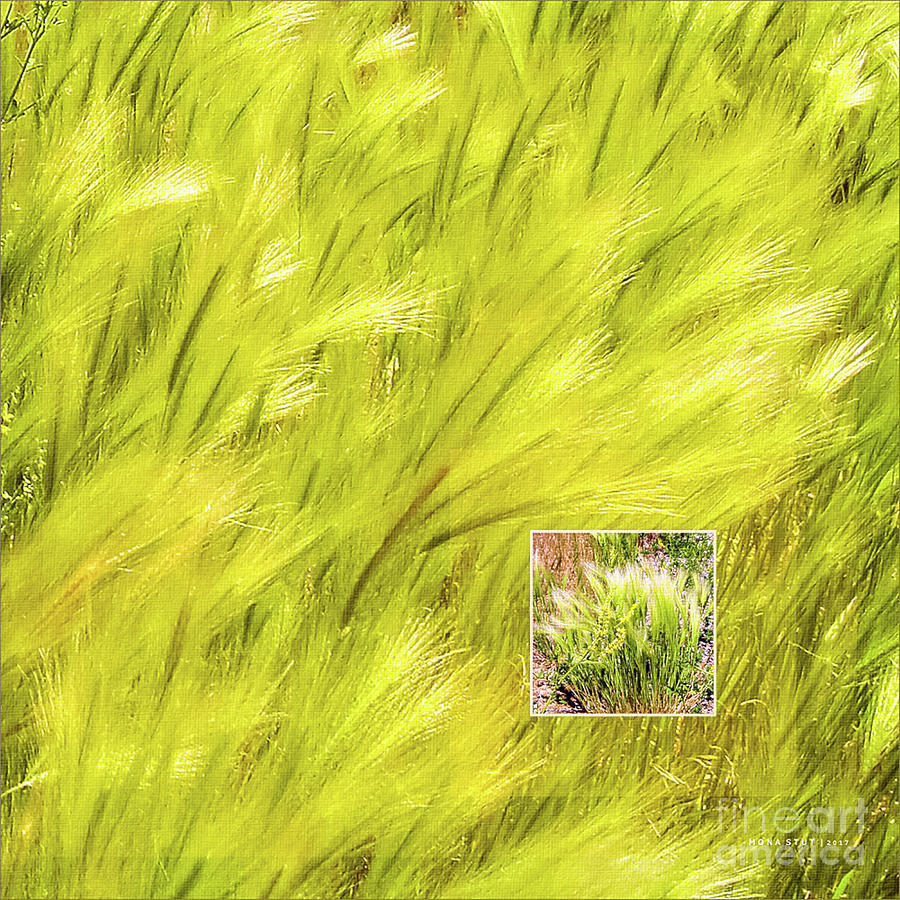 Visions Of Spring Green Breeze Photograph