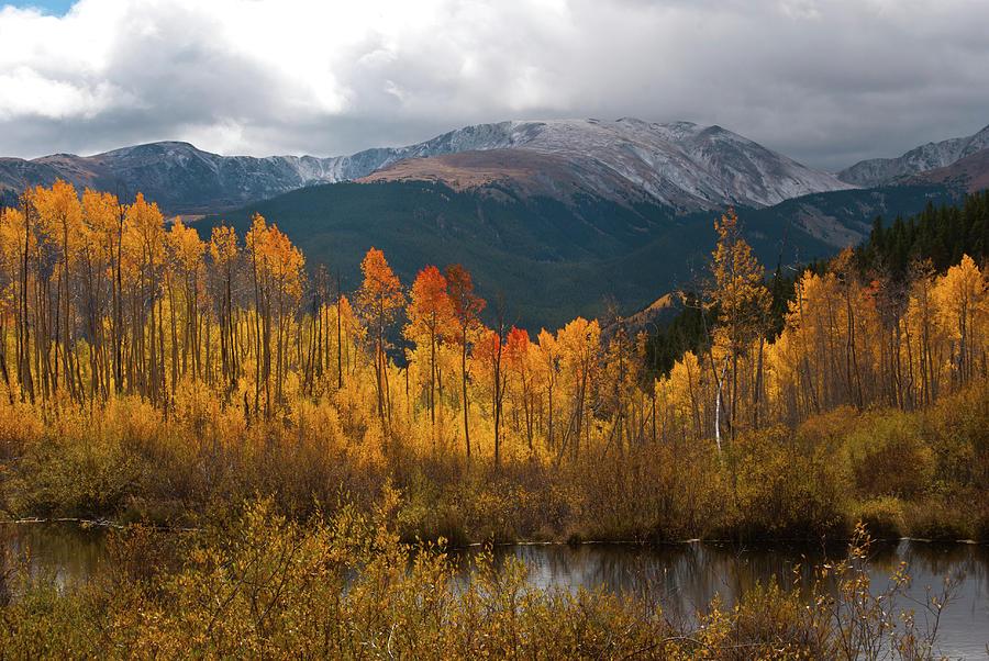 Aspen Photograph - Vivid Autumn Aspen And Mountain Landscape by Cascade Colors