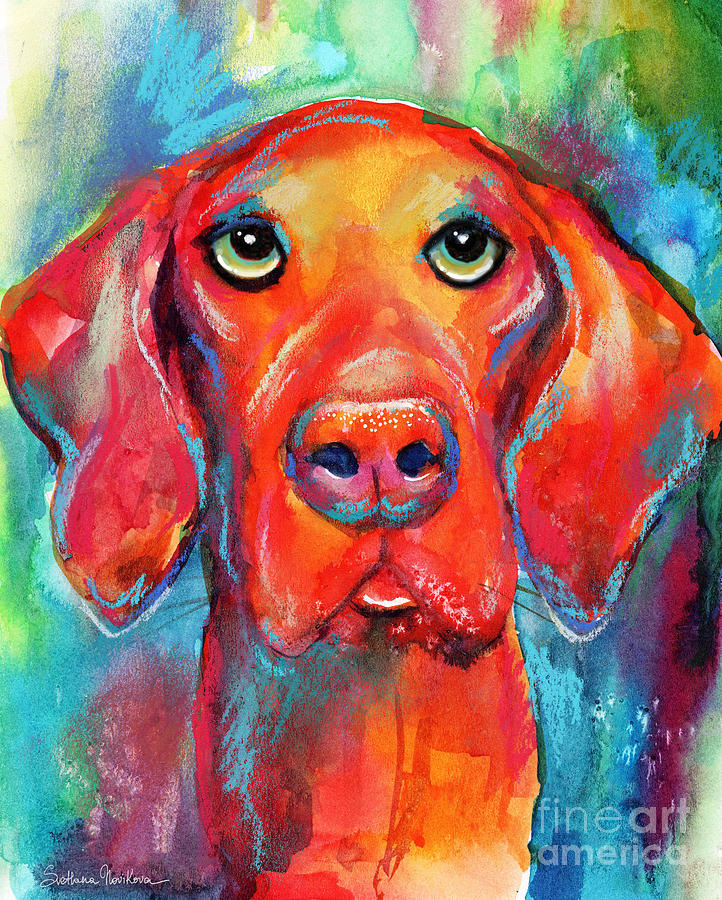 Vizsla dog portrait by Svetlana Novikova
