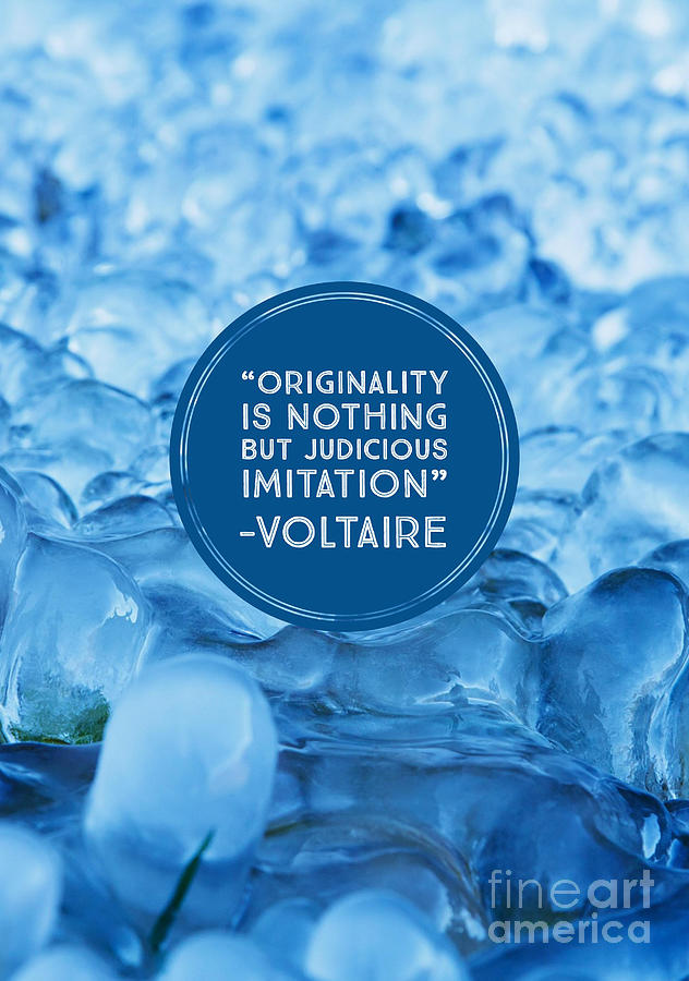 Voltaire Photograph - Voltaire Quote on Originality by Edward Fielding