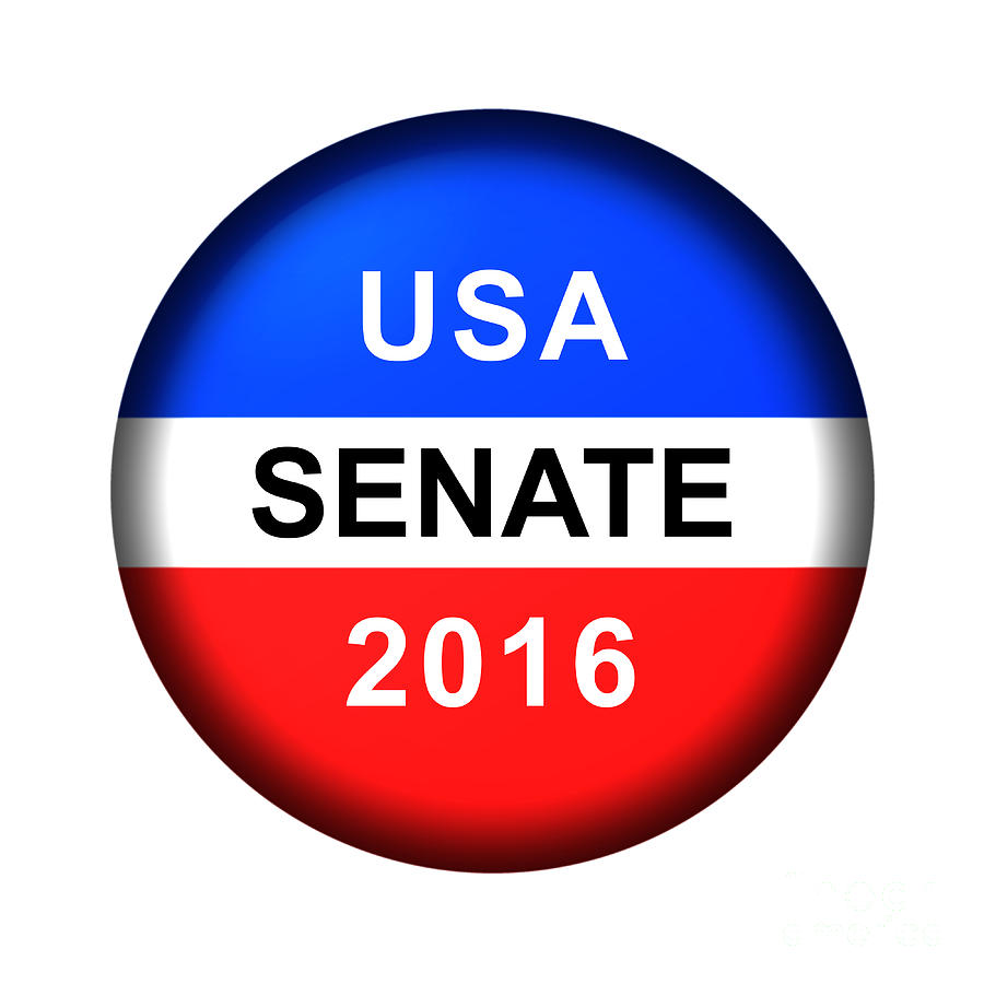 Vote Button Senate by Henrik Lehnerer