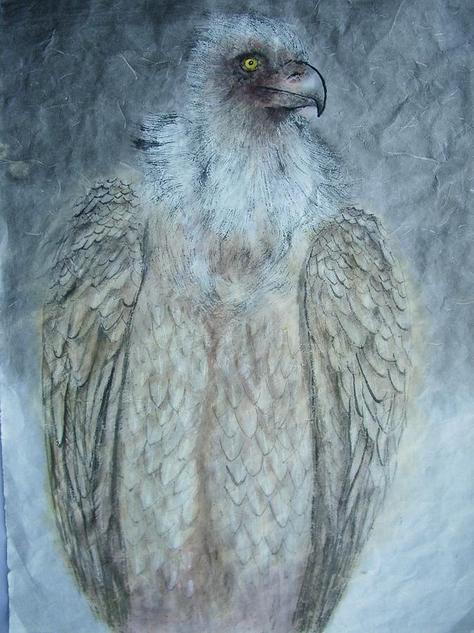 Nature Painting - Vulture by Jian Hua Li