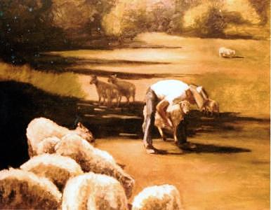 Wade With Sheep Painting by Helen Hickey