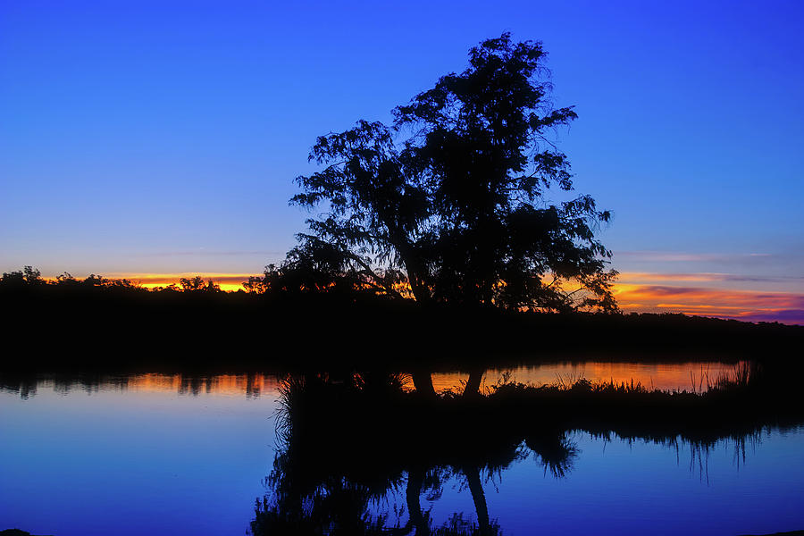 Wagardu Lake, Yanchep National Park by Dave Catley