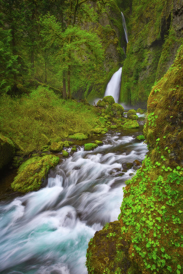 Wahclella Falls Photograph
