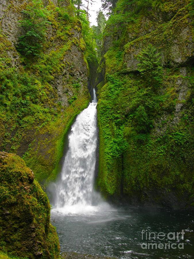Wahclella Falls Photograph - Wahclella Falls by PJ  Cloud
