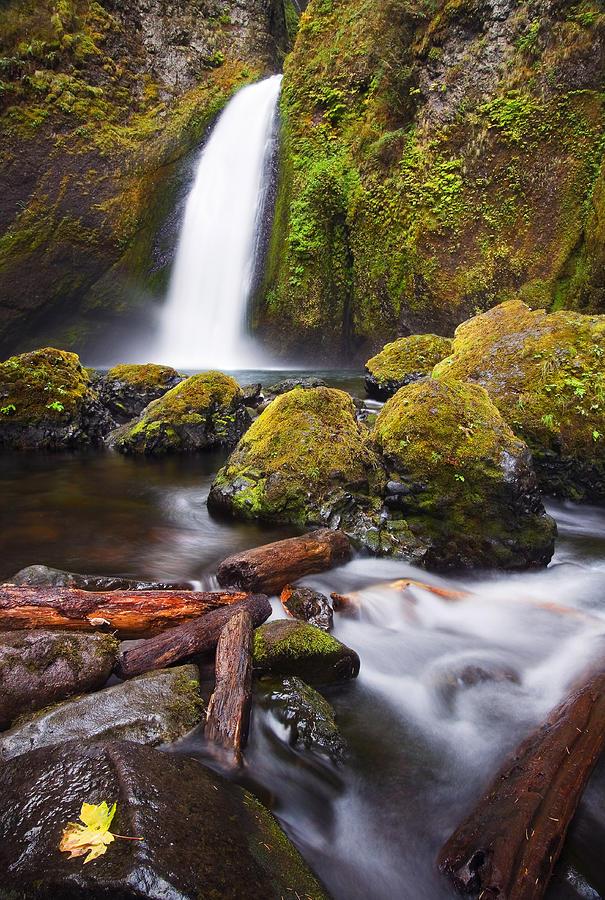 Waterfall Photograph - Wahclella by Mike  Dawson