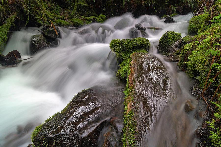 Columbia River Photograph - Wahkeena Creek by David Gn