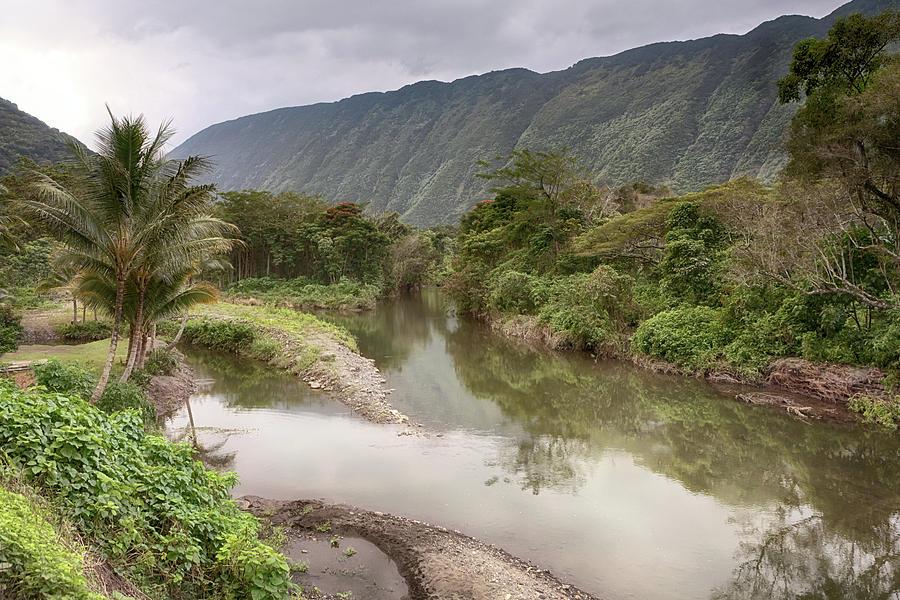 Waipio Valley Photograph - Wailoa Stream by Susan Rissi Tregoning