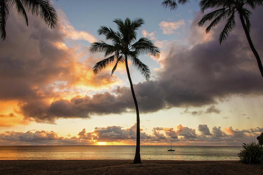 Palm Trees Photograph - Waimea Beach Sunset - Oahu Hawaii by Brian Harig