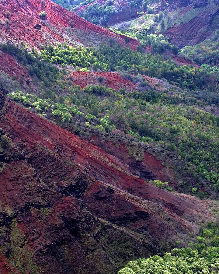 Waimea Canyon II by Kenneth Campbell