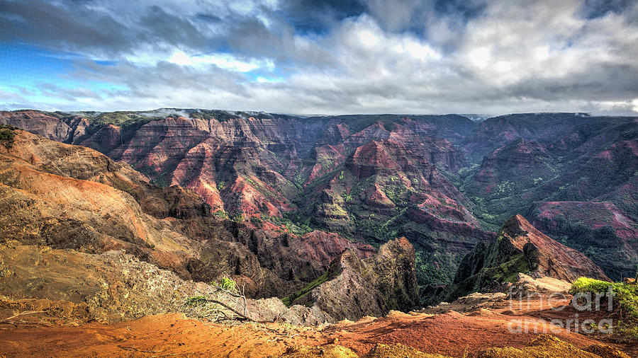 Waimea Canyon Kauai Hawaii by Dustin K Ryan