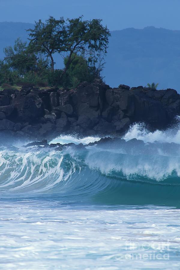Hawaii Photograph - Waimea Shorebreak by Stan and Anne Foster