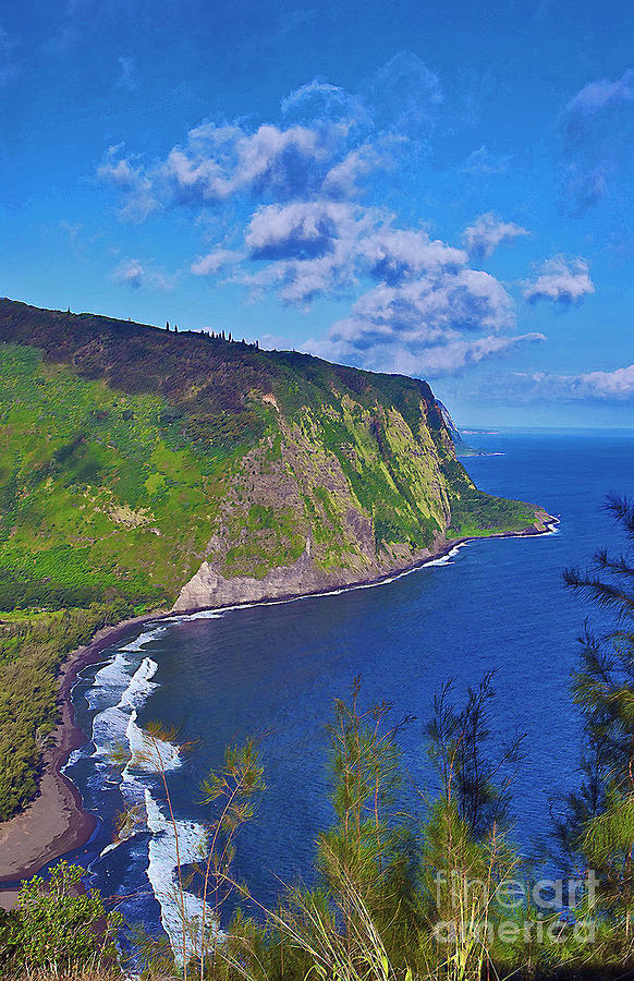 Waipio Overlook by Bette Phelan