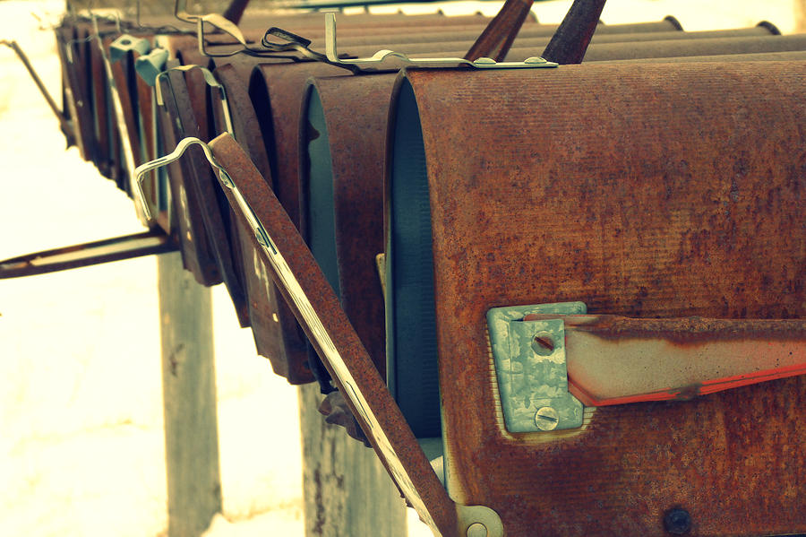 Mail Photograph - Waiting by Carla Froshaug