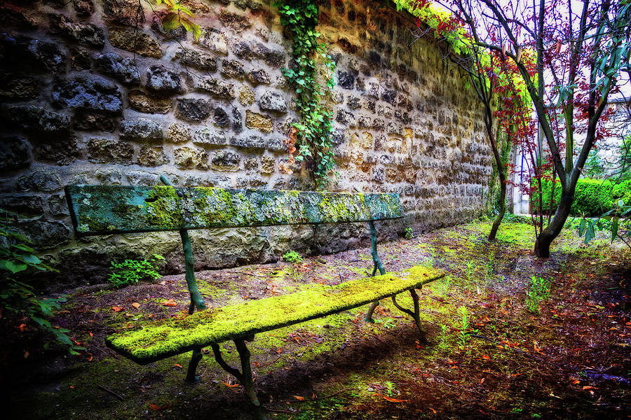 French Photograph - Waiting by Debra and Dave Vanderlaan