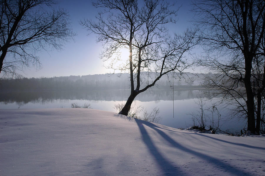 Winter Photograph - Waiting For Summer by Ross Powell