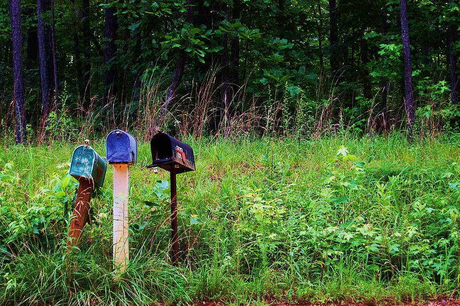 Country Photograph - Waiting For The Mail by Beverly Hammond