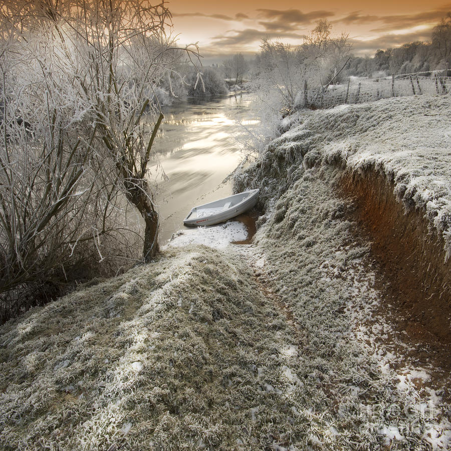 Winter Photograph - Waiting For The Summer by Angel Ciesniarska