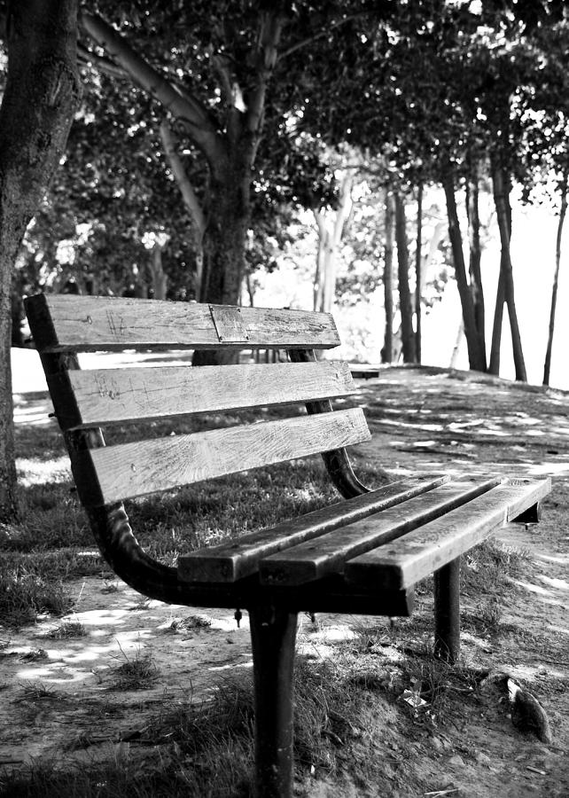 Bench Photograph - Waiting In Bw by Edward Myers