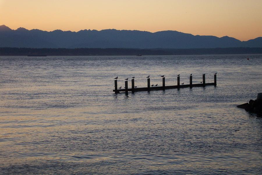 Puget Sound Photograph - Waiting by James Johnstone