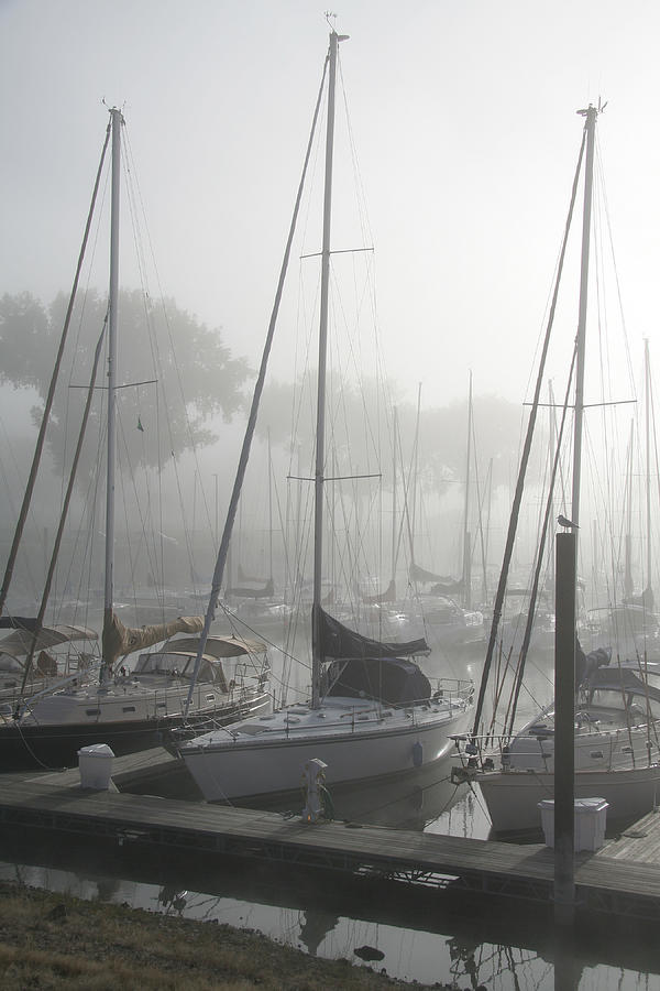Sailboats Photograph - Waiting On The Fog by Laurie With