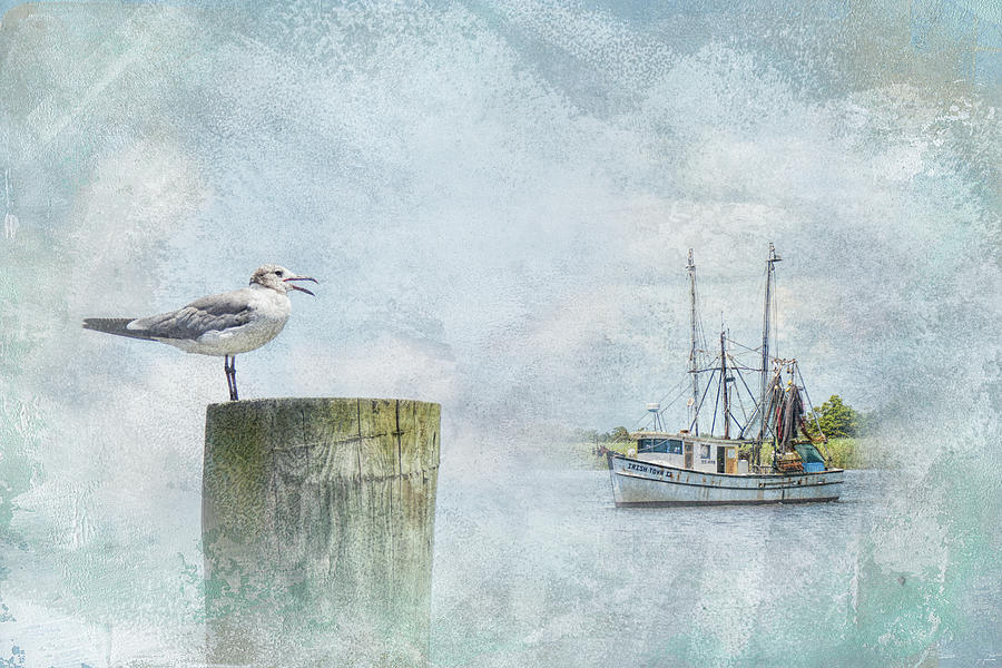 Jai Johnson Photograph - Waiting On Your Ship To Come In by Jai Johnson