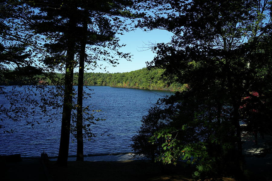 Walden Photograph - Walden Pond End Of Summer by Lawrence Christopher
