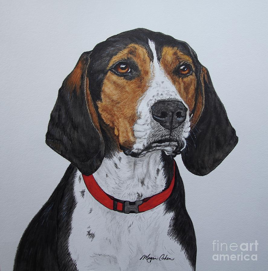 Coonhound Painting - Walker Coonhound - Cooper by Megan Cohen