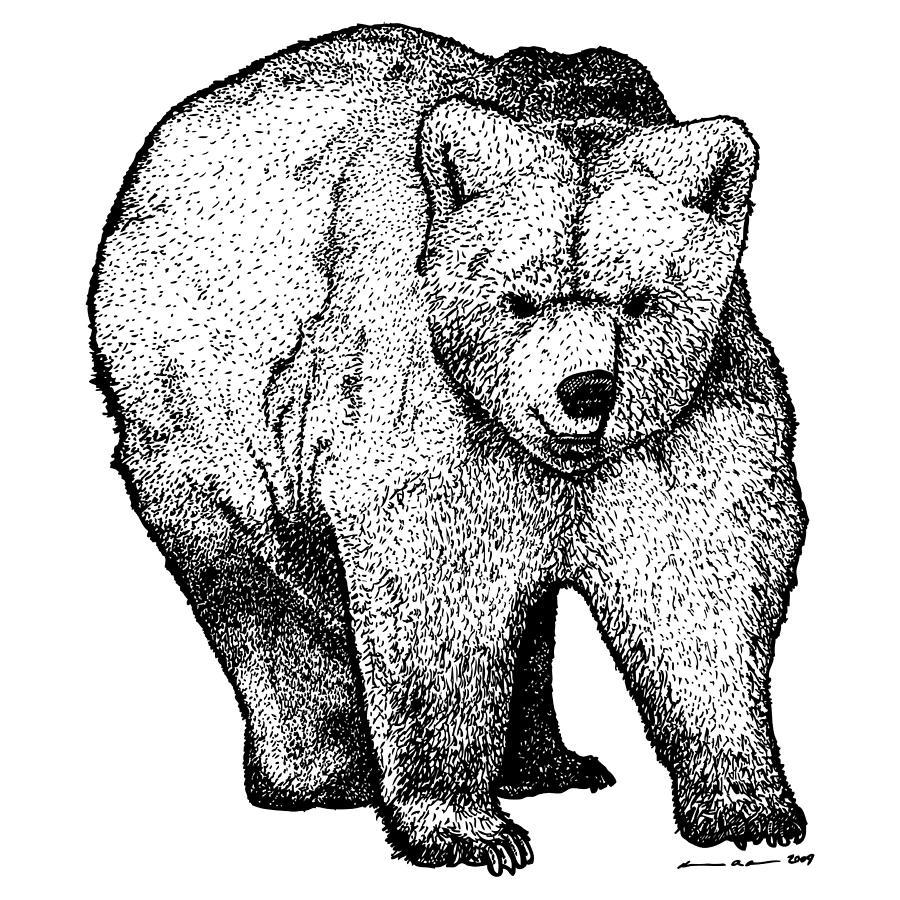 Walking Bear Drawing by Karl Addison Walking Bear Drawing