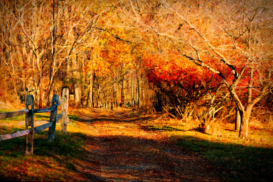 Autumn Photograph - Walking Down The Autumn Path by Jeff Folger
