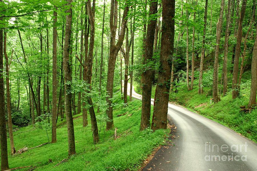 Alone Photograph - Walking On A Country Road - Appalachian Mountain Backroad by Matt Tilghman