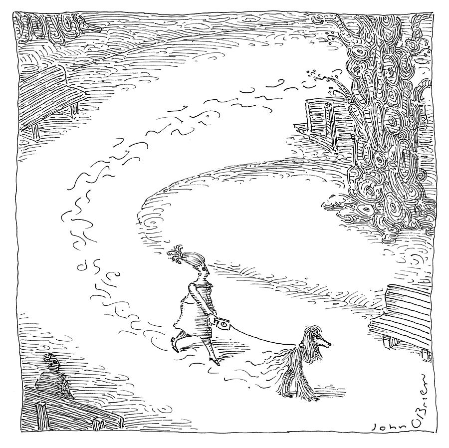 Walking the Dog Drawing by John OBrien