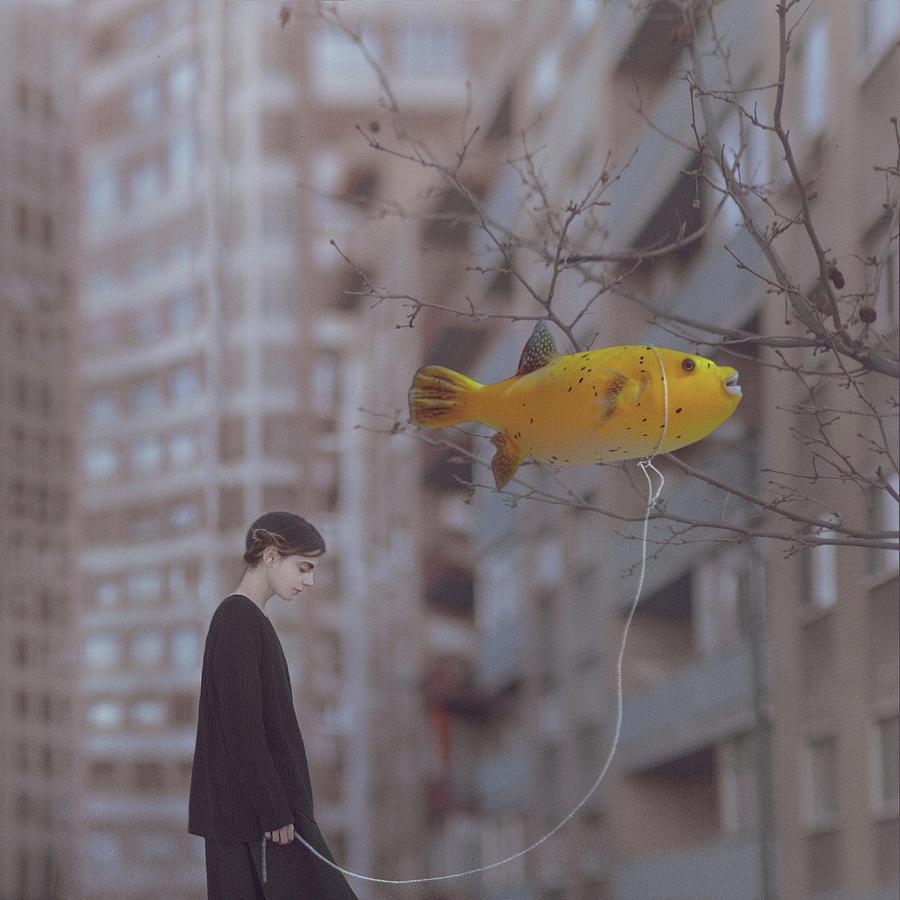 Walking The Fish Photograph by Anka Zhuravleva