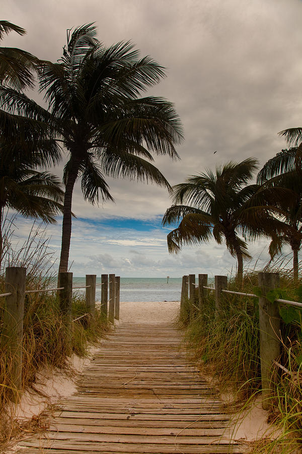 Florida Photograph - Walking To The Beach by Patrick  Flynn