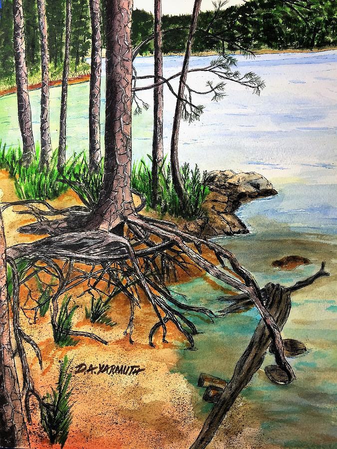 Walking Trees by Dale Yarmuth