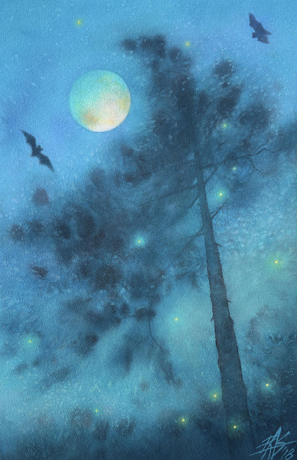 Walking with Bats and Fireflies by Robin Street-Morris