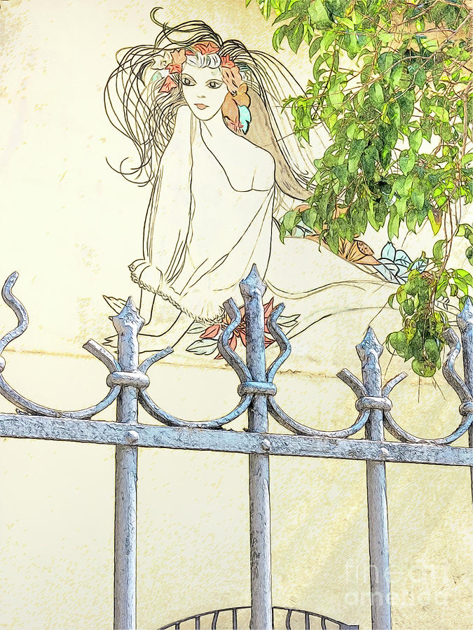 Wall Painting And Wrought Iron Fence Photograph