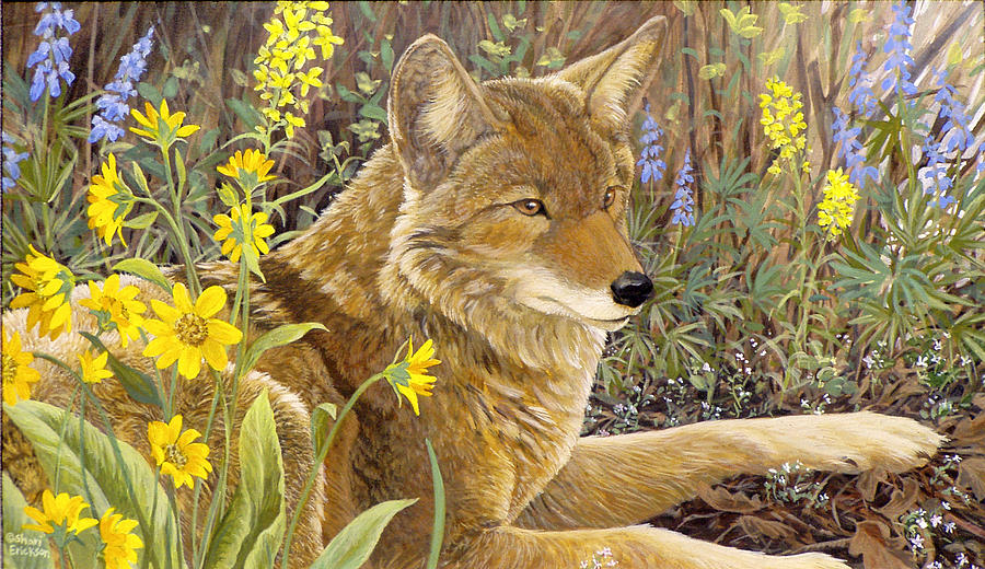 Coyote Painting - Wallflower by Shari Erickson